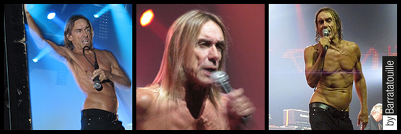 barratatouille-iggy-pop-01